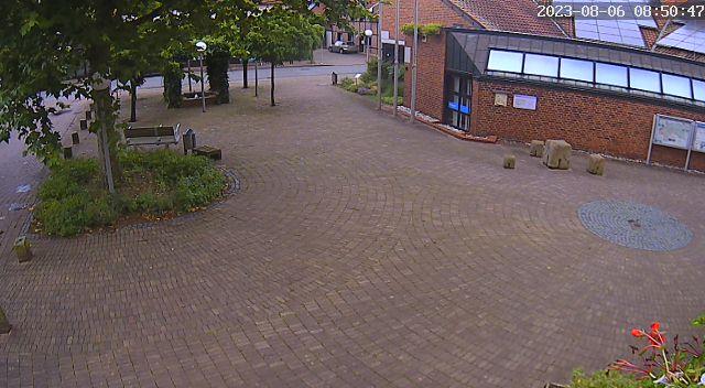 Webcam-Livebild